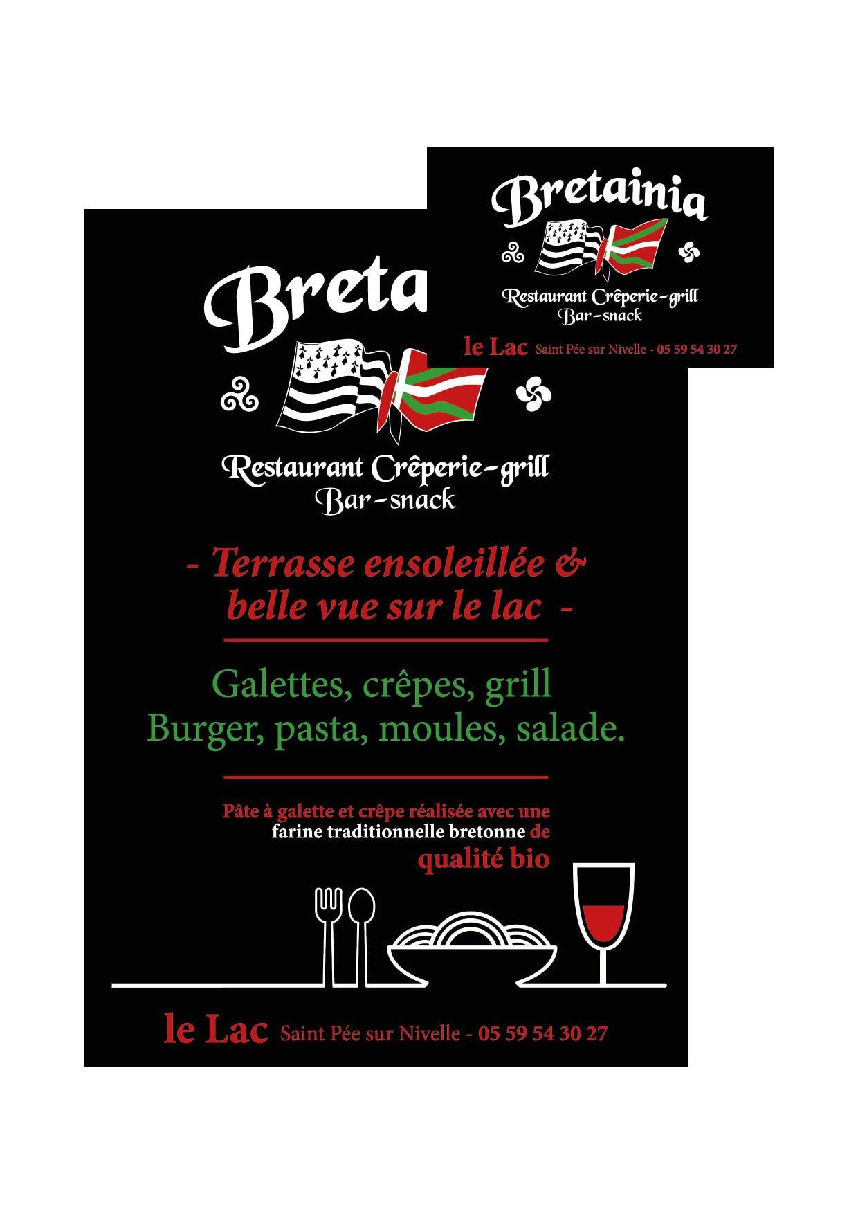 Creation Dun Logo Carte De Visite Et Flyer Pour Bretainia