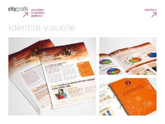 newsletter, classeur, cd rom, pdf interactif.